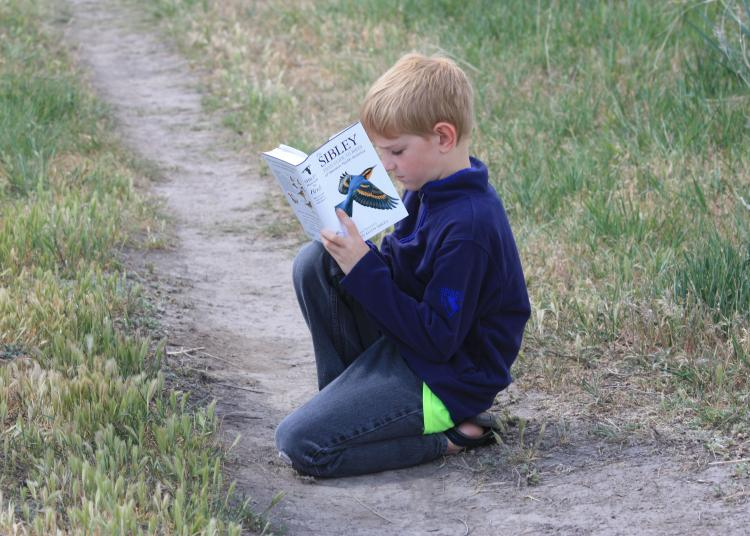 A young birder at the ODFW Ladd Marsh Wildlife Area Bird Festival.