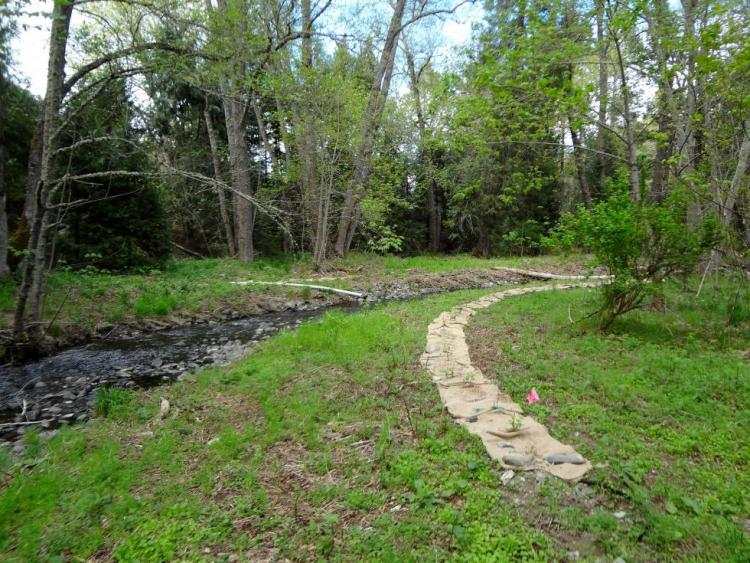 Applegate Partnership project on Thompson Creek after restoration work began