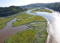 North Fork Siuslaw River