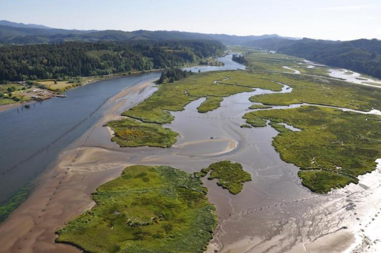 The Siuslaw River Estuary in Oregon's Coast Range ecoregion.