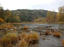 North Umpqua River area