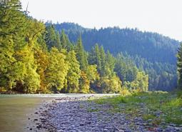 Middle Fork Willamette River