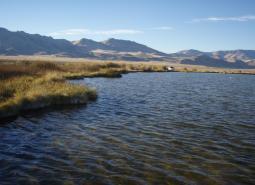 Alvord Lake